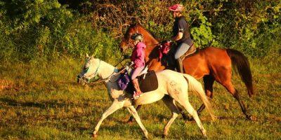Training Ride Mileage UPDATE!