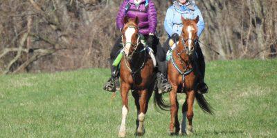 2020 Horse and Rider Mileage